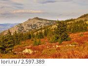 Южный  Урал, гора Малый Иремель. Стоковое фото, фотограф Тимур Кузяев / Фотобанк Лори
