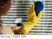 Купить «Женщина моет окно», фото № 2601505, снято 22 сентября 2007 г. (c) Величко Микола / Фотобанк Лори
