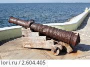 Купить «Пушка на берегу Кампече, Мексика», фото № 2604405, снято 27 марта 2011 г. (c) Валерий Шанин / Фотобанк Лори