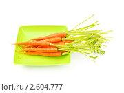 Купить «Морковка на тарелке на белом фоне», фото № 2604777, снято 29 мая 2010 г. (c) Elnur / Фотобанк Лори