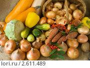 Купить «Овощи», фото № 2611489, снято 13 сентября 2010 г. (c) Яков Филимонов / Фотобанк Лори