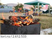 Купить «Жизнь палаточного городка», фото № 2612533, снято 25 июля 2010 г. (c) Светлана Кузнецова / Фотобанк Лори