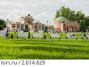 Купить «Центральные ворота и павильон. Царицыно», эксклюзивное фото № 2614829, снято 21 июня 2011 г. (c) Александр Щепин / Фотобанк Лори