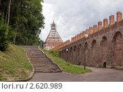 Смоленский кремль на реставрации (2011 год). Редакционное фото, фотограф Андрей Дмитриев / Фотобанк Лори