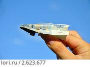 Самолетик из купюры (пятьдесят рублей) Стоковое фото, фотограф Мастепанов Павел / Фотобанк Лори