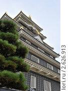 Купить «Замок в городе Окаяма, Япония», фото № 2626913, снято 18 октября 2010 г. (c) Павел Байшев / Фотобанк Лори