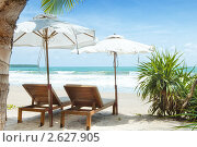 Купить «Тропический пейзаж», фото № 2627905, снято 6 мая 2011 г. (c) Дмитрий Эрслер / Фотобанк Лори