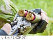Купить «Старое ружье», фото № 2629361, снято 25 июня 2011 г. (c) Александр Романов / Фотобанк Лори