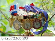 """Купить «Медали """"Первенство Москвы""""», эксклюзивное фото № 2630593, снято 28 июня 2011 г. (c) lana1501 / Фотобанк Лори"""