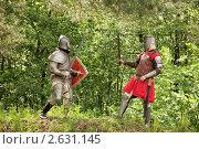 Купить «Битва рыцарей», фото № 2631145, снято 5 июня 2010 г. (c) Яков Филимонов / Фотобанк Лори