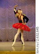 Купить «Балет», фото № 2632645, снято 29 июня 2011 г. (c) Дмитрий Карасев / Фотобанк Лори