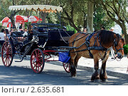 Старинная карета для прогулок по городу. Португалия, Лиссабон (2011 год). Редакционное фото, фотограф Vasilii Olii / Фотобанк Лори