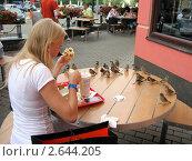 Где обедал воробей? (2011 год). Редакционное фото, фотограф Винокуров Евгений / Фотобанк Лори