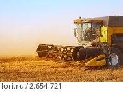 Купить «Сбор урожая пшеницы. Краснодарский край. Кубань», фото № 2654721, снято 11 июля 2011 г. (c) Анатолий Типляшин / Фотобанк Лори