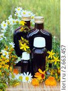 Купить «Лекарственные препараты на основе трав», фото № 2663457, снято 8 июля 2011 г. (c) Татьяна Белова / Фотобанк Лори