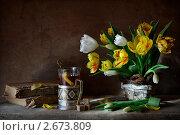 Купить «Натюрморт с тюльпанами, старыми книгами и стаканом чая», фото № 2673809, снято 2 марта 2011 г. (c) Julia Ovchinnikova / Фотобанк Лори
