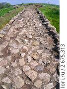 Купить «Каменная мостовая Танаиса», фото № 2675313, снято 14 мая 2011 г. (c) Борис Панасюк / Фотобанк Лори