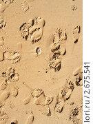 Купить «Песчаный фон со следами ног», фото № 2675541, снято 2 апреля 2009 г. (c) bashta / Фотобанк Лори