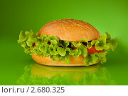 Купить «Гамбургер без мяса», фото № 2680325, снято 8 мая 2011 г. (c) Сергей Новиков / Фотобанк Лори