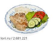 Жареное мясо с гарниром. Стоковое фото, фотограф Михаил Голубев / Фотобанк Лори