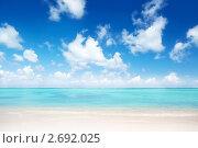 Купить «Пляж. Доминиканская Республика», фото № 2692025, снято 2 ноября 2009 г. (c) Iakov Kalinin / Фотобанк Лори