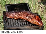 Запеченная рыба. Стоковое фото, фотограф Юлия Букликова / Фотобанк Лори