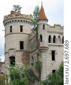 Муромцево. Замок графа Храповицкого (2009 год). Стоковое фото, фотограф Светлана Островская / Фотобанк Лори
