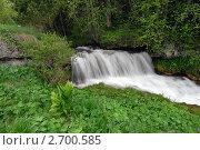 Купить «Водопад на  реке Молочке, плато Лагонаки, Адыгея», фото № 2700585, снято 12 июня 2011 г. (c) Оглоблин Андрей Николаевич / Фотобанк Лори