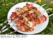 Купить «Шашлык», фото № 2701917, снято 30 июля 2011 г. (c) Анастасия Мелешкина / Фотобанк Лори