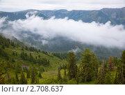 Купить «Пейзажи горного Алтая. Туман в горах», фото № 2708637, снято 14 июля 2020 г. (c) Наталья Волкова / Фотобанк Лори