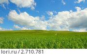 Купить «Зеленый холм и голубое небо с облаками», видеоролик № 2710781, снято 8 июня 2011 г. (c) Михаил Коханчиков / Фотобанк Лори