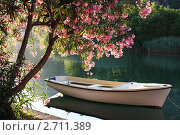 Купить «Лодка у берега реки Омбла, Хорватия», фото № 2711389, снято 21 июня 2011 г. (c) Pshenichka / Фотобанк Лори