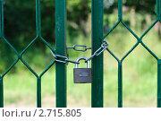 Навесной замок на воротах. Стоковое фото, фотограф Абушкина Мария / Фотобанк Лори