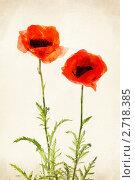 Купить «Красный мак. Акварельный рисунок», иллюстрация № 2718385 (c) Алексей Кузнецов / Фотобанк Лори