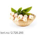 Купить «Букет искусственных тюльпанов на белом фоне», фото № 2720293, снято 25 августа 2010 г. (c) Elnur / Фотобанк Лори