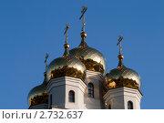 Купола православной церкви. Стоковое фото, фотограф Юлия Петрова / Фотобанк Лори