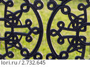 Купить «Чугунный узор», фото № 2732645, снято 3 июля 2011 г. (c) Юлия Петрова / Фотобанк Лори