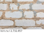 Кирпичная стена. Стоковое фото, фотограф Князева Наталья / Фотобанк Лори
