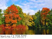 Купить «Очень красивые деревья с яркой листвой в осеннем парке», фото № 2735577, снято 3 октября 2009 г. (c) Татьяна Савватеева / Фотобанк Лори