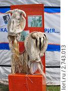 Купить «Наряды для карнавала», фото № 2743013, снято 17 июля 2011 г. (c) Кривошеева Светлана / Фотобанк Лори