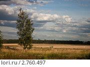 Пейзаж с облаками. Стоковое фото, фотограф Антонова Мария / Фотобанк Лори
