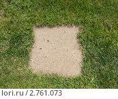 Элемент тропинки на газоне. Стоковое фото, фотограф Федор Козлов / Фотобанк Лори