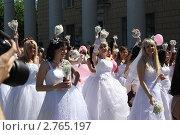 Парад невест (2011 год). Редакционное фото, фотограф Василий Пешненко / Фотобанк Лори