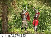 Купить «Битва рыцарей», фото № 2770853, снято 5 июня 2010 г. (c) Яков Филимонов / Фотобанк Лори