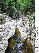Купить «Агурское ущелье, пересохшая Чертова купель летом», фото № 2772673, снято 17 августа 2011 г. (c) Анна Мартынова / Фотобанк Лори