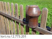 Купить «Крынка на заборе», фото № 2773201, снято 25 августа 2011 г. (c) Slasha / Фотобанк Лори