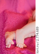 Ножки месячной девочки. Стоковое фото, фотограф Ольга Шабалкина / Фотобанк Лори