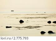 Купить «Рыбаки. Онежское озеро», фото № 2775793, снято 26 июля 2011 г. (c) Охотникова Екатерина *Фототуристы* / Фотобанк Лори