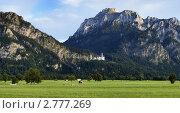 Купить «Панорама Баварских Альп с замком Нойшванштайн, Германия», фото № 2777269, снято 26 августа 2010 г. (c) Михаил Марковский / Фотобанк Лори