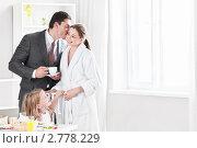 Купить «Бизнесмен целует жену перед уходом на работу», фото № 2778229, снято 8 июля 2011 г. (c) Raev Denis / Фотобанк Лори